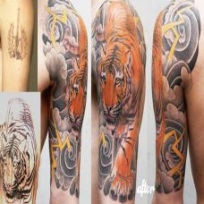大臂雷霆下山虎纹身图案