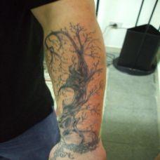 胳膊上一棵枯树的纹身图案