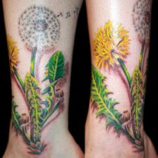 小臂上的蒲公英纹身图案