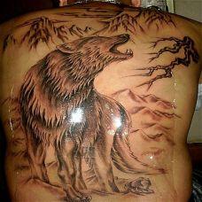 满背狼纹身图案