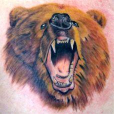后背上的狗熊头纹身图案