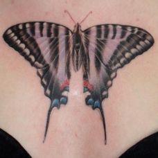 胸前的蝴蝶纹身图案