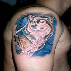 大臂上的狼纹身图案