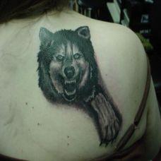 后背上的狼纹身图案