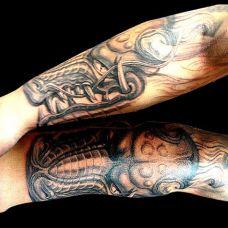 胳膊上的鳄鱼纹身