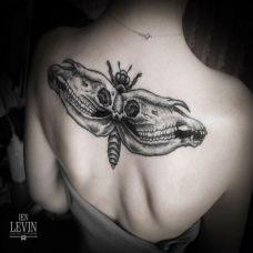 后背上的枯骨飞蛾纹身图案