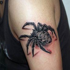 大臂上的黑灰色的蜘蛛纹身图案