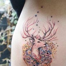 腰侧的鹿头遮盖纹身图案