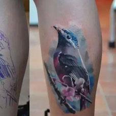 小腿上的遮盖翠鸟纹身图案