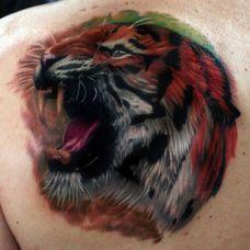 后背肩胛骨上的一只老虎纹身图案