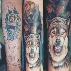 小臂上的遮盖狼纹身图案