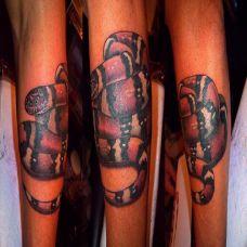 小臂上的环蛇纹身图案