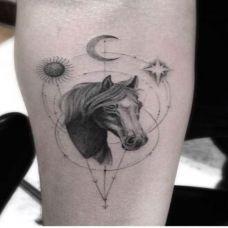 小臂上的马头纹身手稿