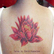 后背上的红色莲花纹身图案