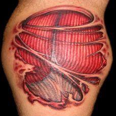 小臂上的解剖肌肉纹身图案