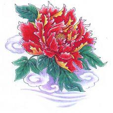 大红色牡丹花纹身手稿