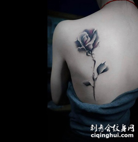 温柔似花开,美女后背玫瑰个性纹身(图片编号:39595)