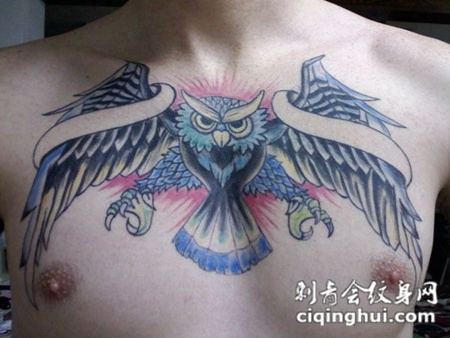 男士个性猫头鹰胸部纹身