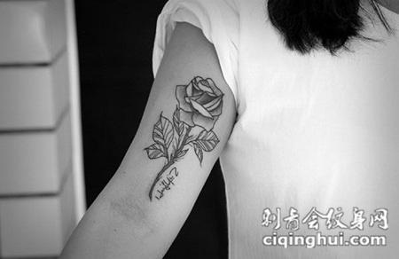 女人如花,手臂简洁玫瑰花纹身图案