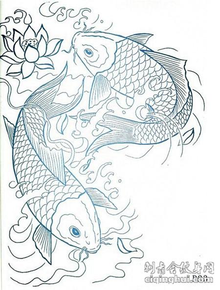 经典麒麟 龙 锦鲤纹身线稿