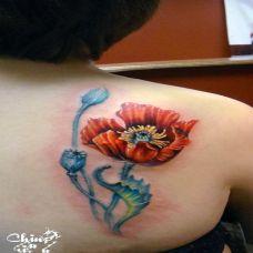 女生背部彩绘罂粟花刺青图片