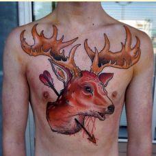 男性胸前另类彩绘羊纹身图案