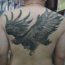 男生背部霸气老鹰纹身图案