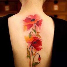 性感女生背部罂粟花纹身图片