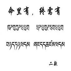 拉丁文纹身句子黑色文字手稿图片