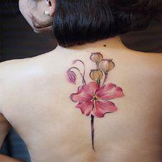女生性感背部罂粟花刺青图片