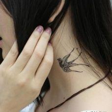 颈部优美飞燕系列纹身