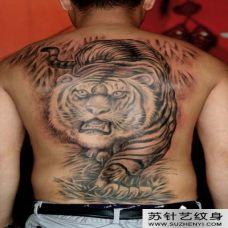男性背部下山虎纹身图案