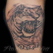 腿部逼真的老虎头像纹身