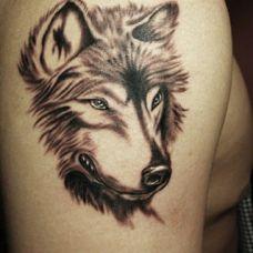手臂超拽个性狼纹身图案