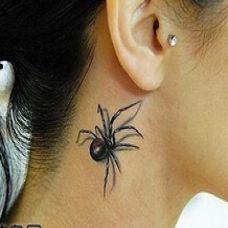 帅气蜘蛛颈部纹身