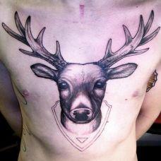 优雅麋鹿胸前纹身图