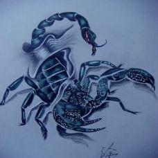 超酷帅气的蝎子纹身手稿