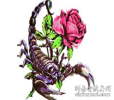 时尚毒物天蝎纹身刺青图案