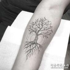 线条小臂树纹身图案