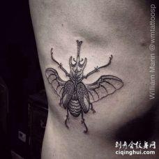 点刺侧腰甲虫纹身图案