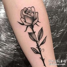 Old School小臂玫瑰纹身图案
