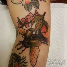 New School小腿甲虫纹身图案