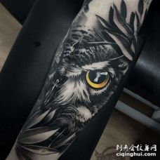 New School小臂猫头鹰纹身图案