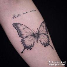 小清新小臂蝴蝶纹身图案