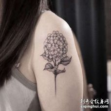 点线大臂花卉纹身图案
