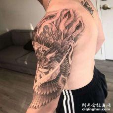 新传统大臂凤凰纹身图案