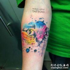 水彩小臂猫纹身图案