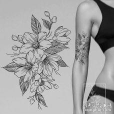 点线胳膊花卉纹身图案