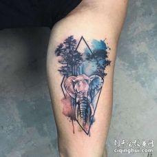 水彩小臂大象纹身图案