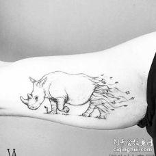 简约 大臂外侧 动物 犀牛